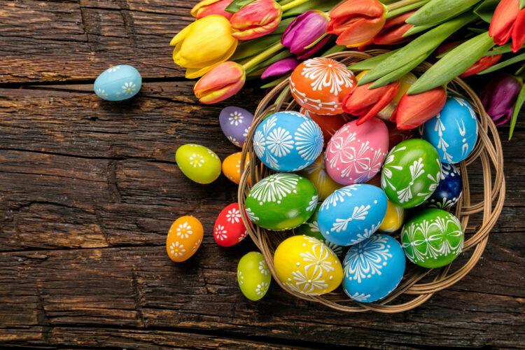tulipany i jajka kraszanki w koszyczku na wielkanoc