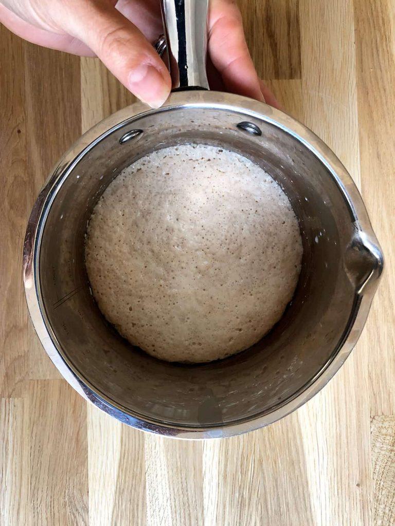 dry yeast starter