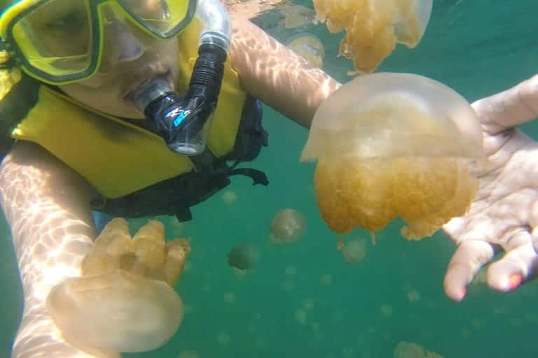 snorkeling with jellyfish in Palau, recommended as a best solo trip for soul searching