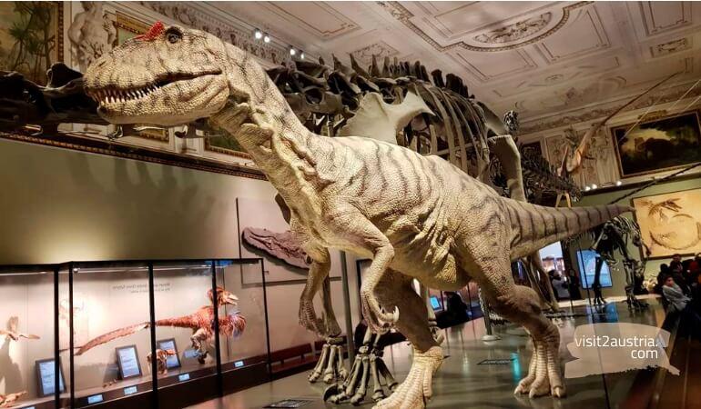 Что посмотреть в Вене - музей естествознания