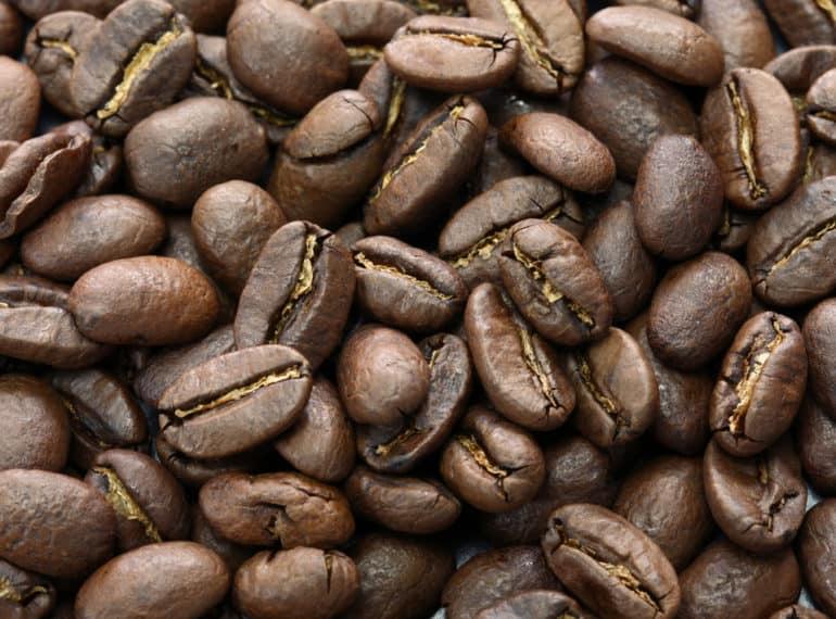 Organic Sumatra Coffee Beans