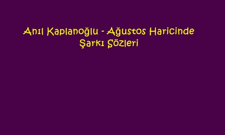 Anıl Kaplanoğlu - Ağustos Haricinde Şarkı Sözleri