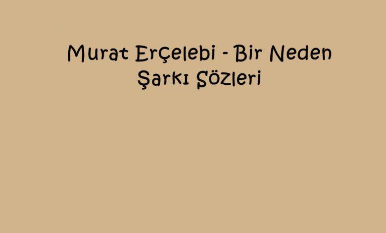Murat Erçelebi - Bir Neden Şarkı Sözleri