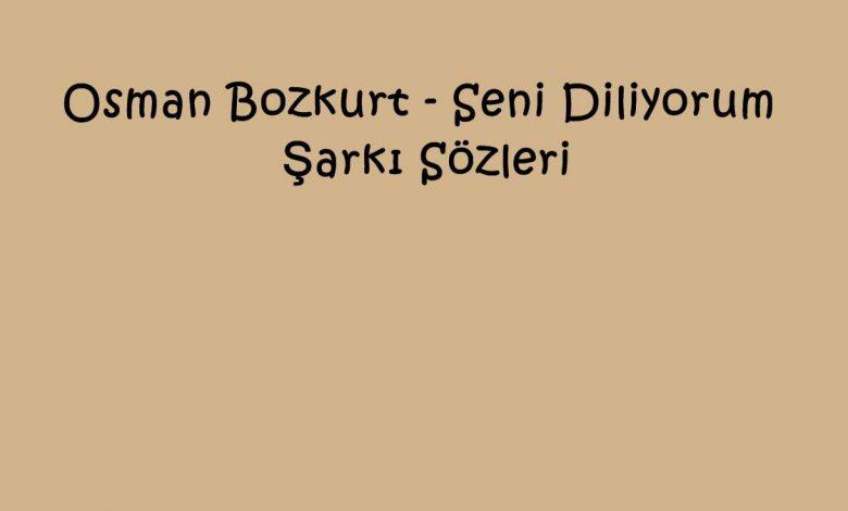 Osman Bozkurt - Seni Diliyorum Şarkı Sözleri
