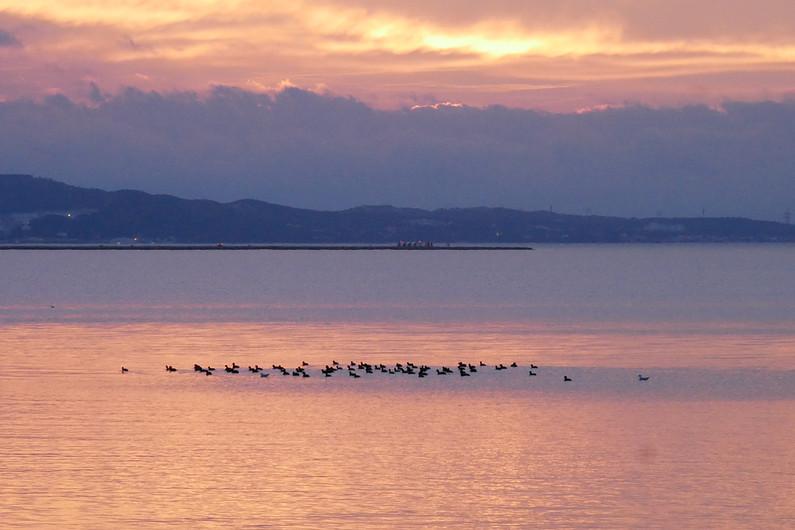 Lagune de Berre en Région Sud