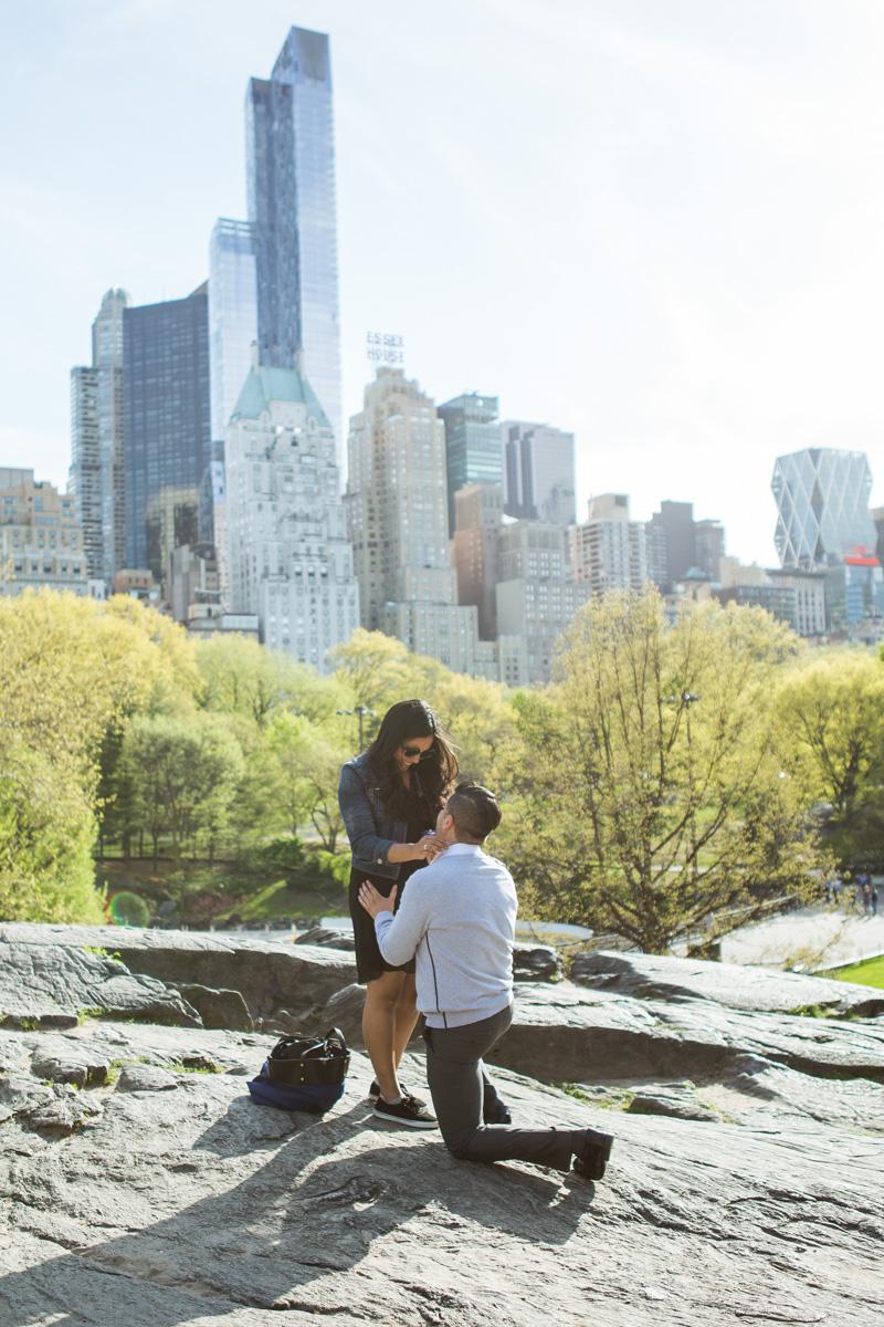 [Central Park the Rock proposal ]– photo[1]
