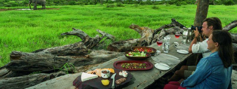 OlDonyo_bush_dining