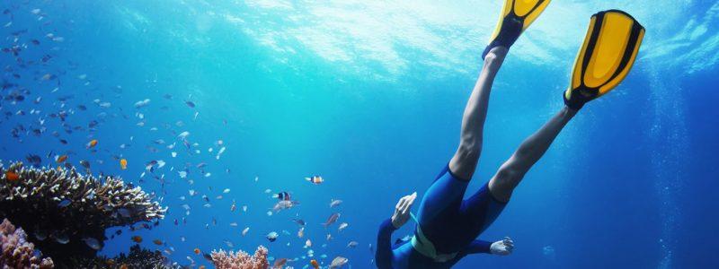 Snorkeling-Gallery-1