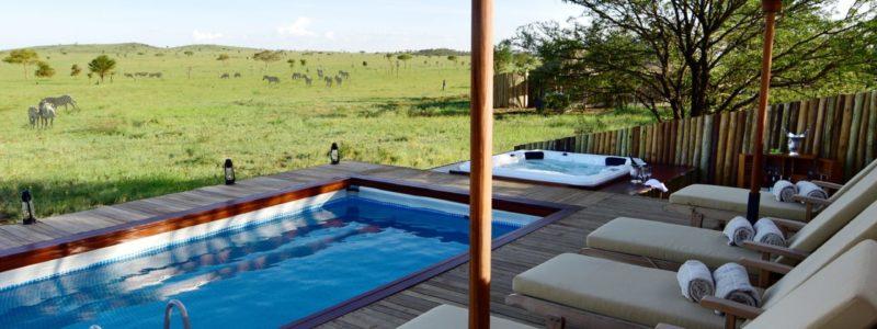 nyaruswiga-swimming_pool_zebra