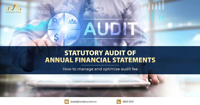 Statutory Audit Of Financial Statements