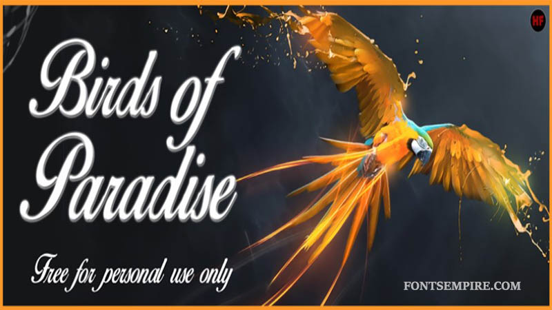 Birds Of Paradise Font Family Free Download