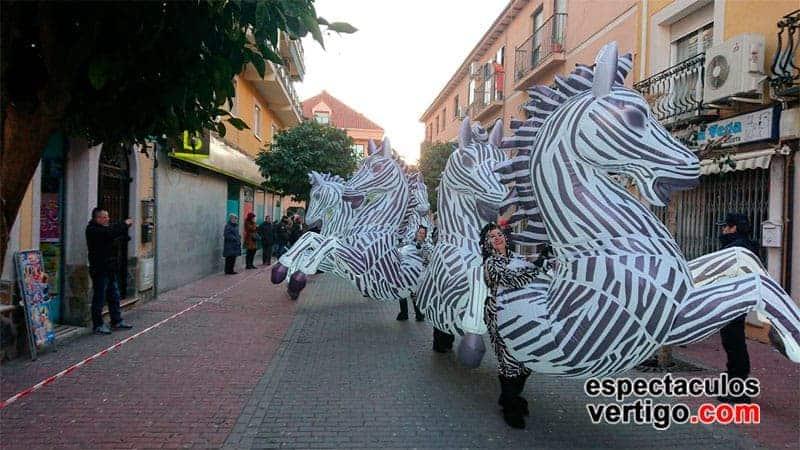 02-Zebras