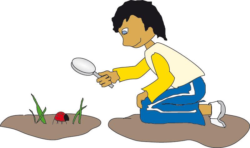 Illustration - Kind schaut durch Lupe auf Marinenkäfer im Gras