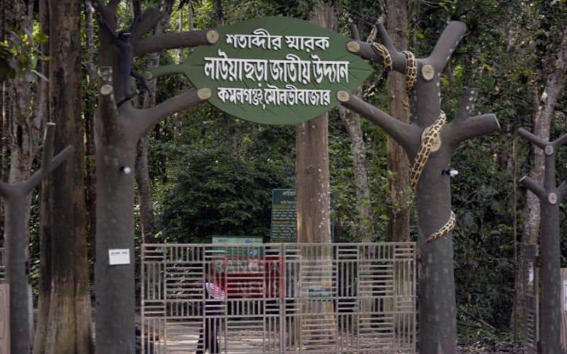 Four wildlife released in Lauachara National Park Bangladesh