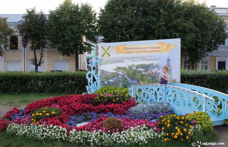 Poshehonye's flowerbed, Yaroslavl, 2016