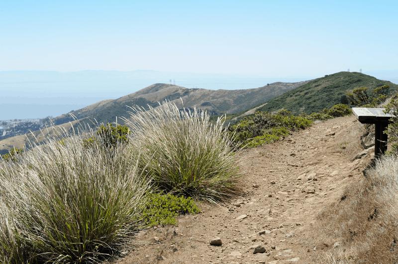 San Bruno Mountain