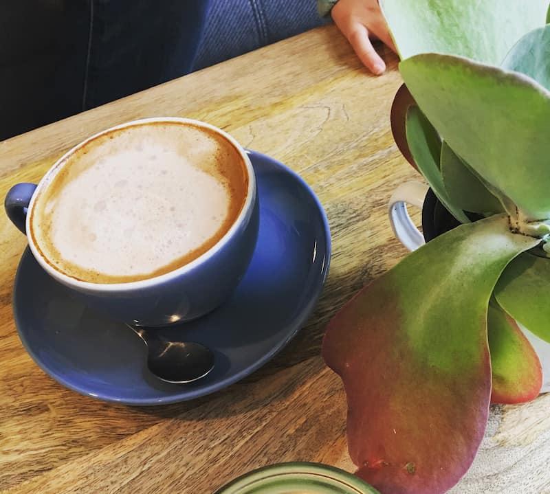cactus-coffee-3