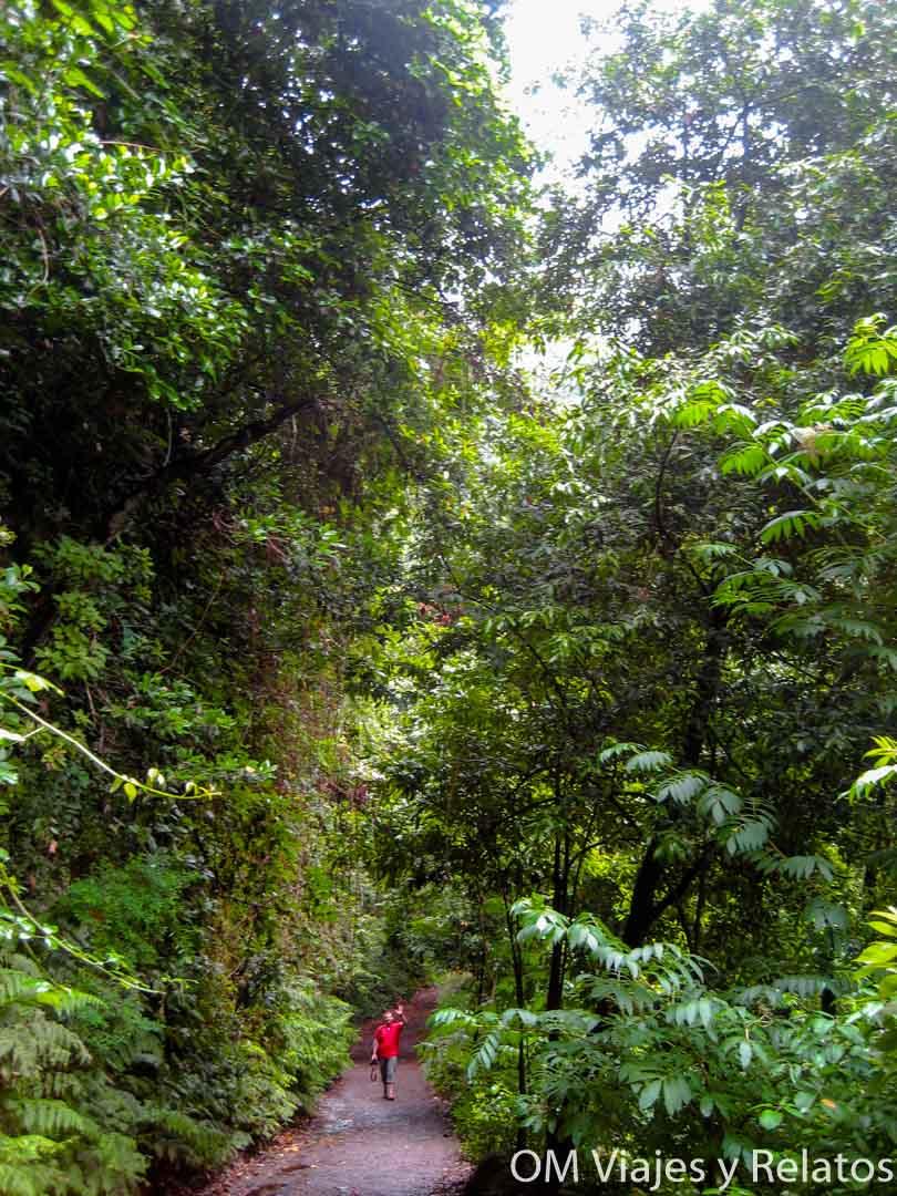 Parques naturales de La Palma