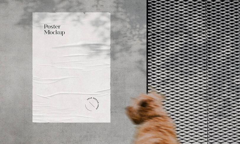 darmowe mockupy plakatu
