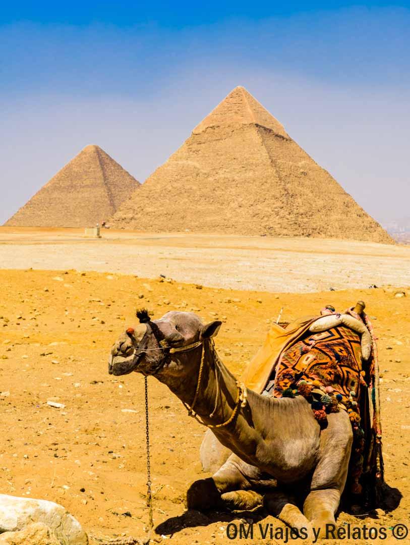 que-ver-en-Giza