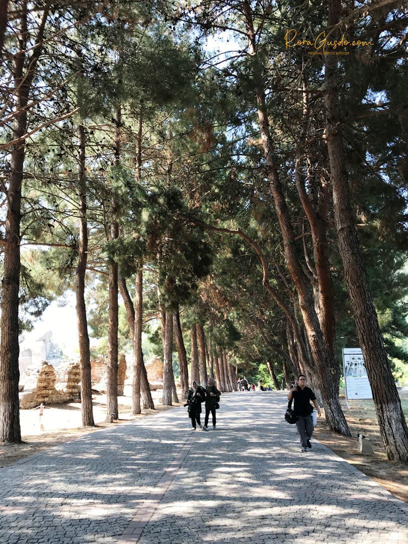 Jalan Menuju Pintu Keluar Ephesus