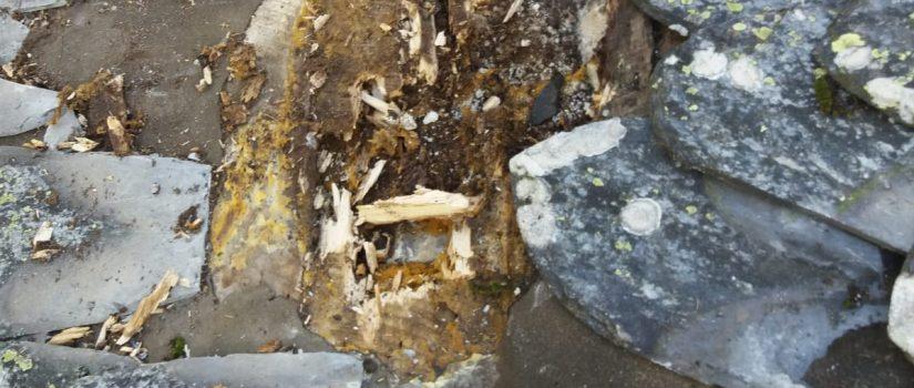 Réparation de toiture ancienne