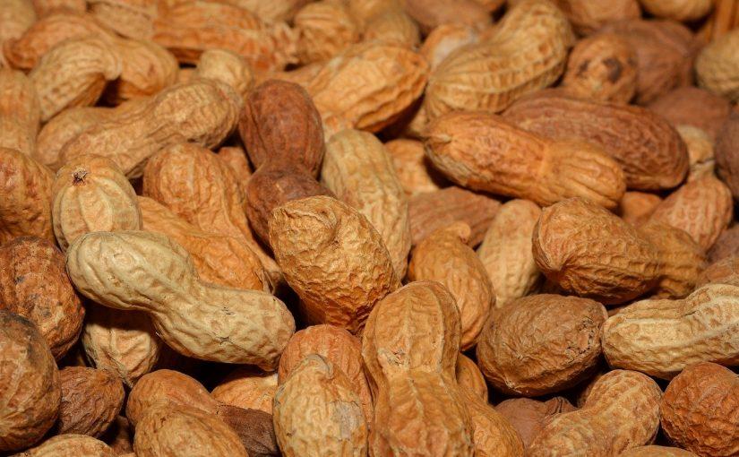 Pinda allergie: Immuuntherapie heeft beperkt resultaat.