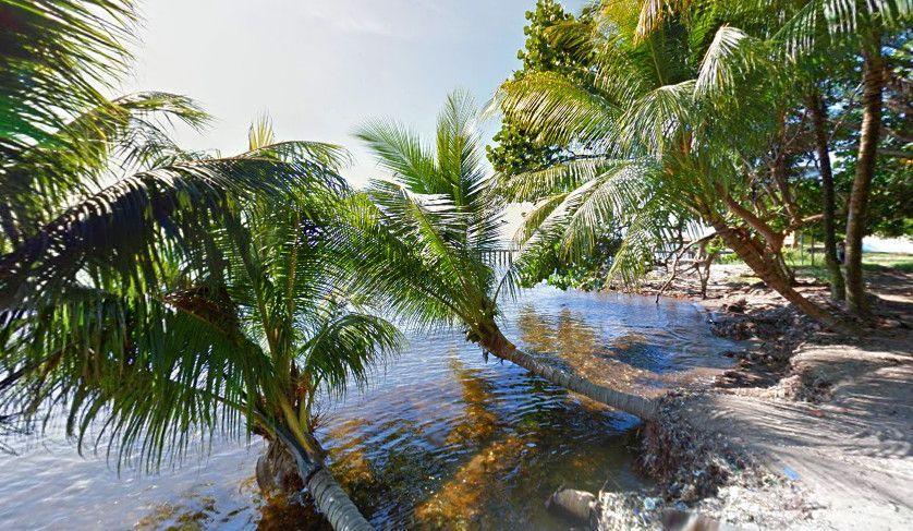Sol, Playa y Palmeras Punta Manabique