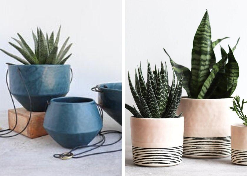 Die schlichten Blumentöpfe aus Keramik sind gut geeignet für Sukkulenten.