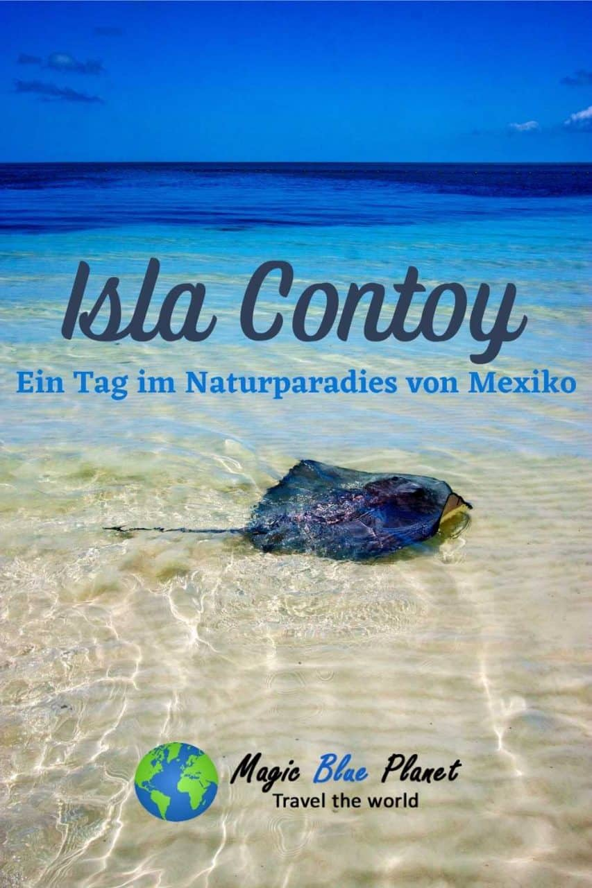 Isla Contoy Pinterest 3 DE