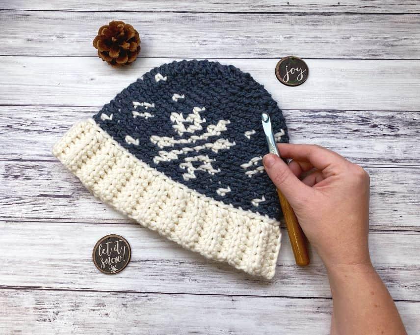 snowflake tapestry crochet beanie
