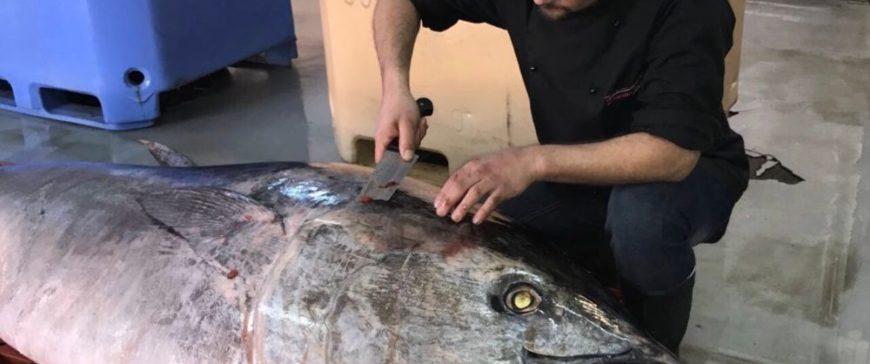 Los ecologistas cargan contra las flotas atuneras utilizando el mal estado del patudo