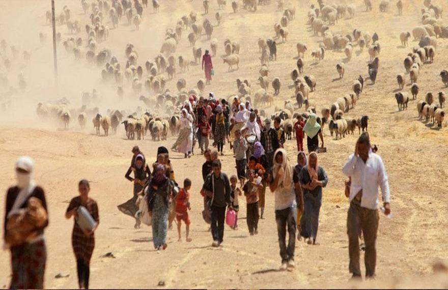 migrations climatiques