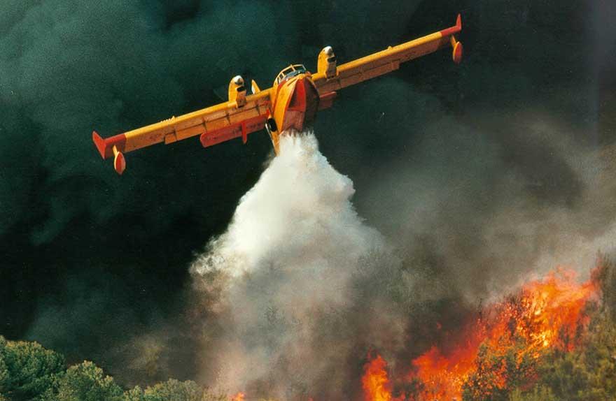 incendies de forêts