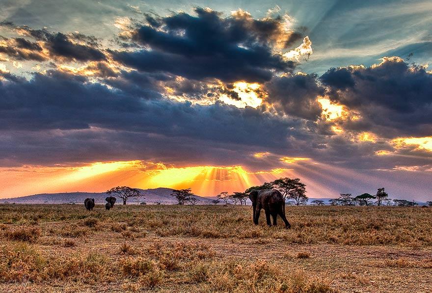 terre sauvage biodiversité