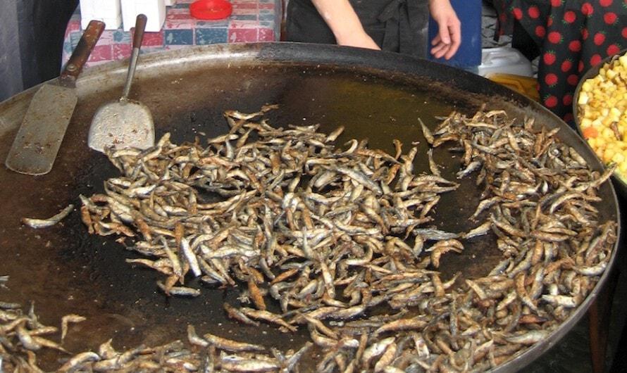 Fischmarkt an der Tonhalle