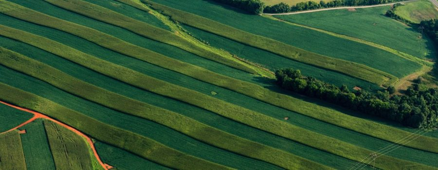agriculture and the Chesapeake Bay
