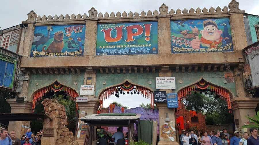 Up Show in Animal Kingdom