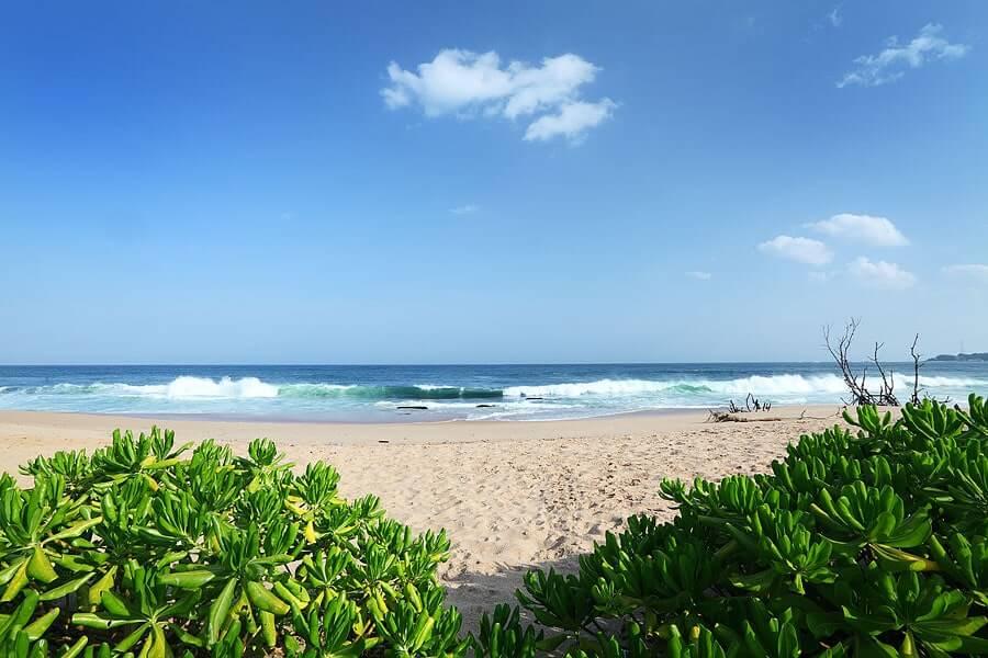 Fotka krásné pláže přímo před Tropical Garden, které nabízí ubytování na Srí Lance