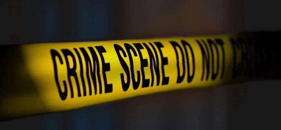 """Violenza domestica, indagine """"I numeri oltre il genere"""" 7"""