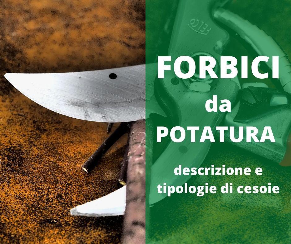 Forbici-da-potatura