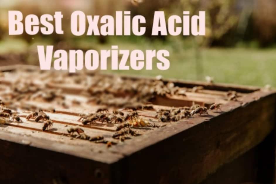 Best Oxalic Acid Vaporizer