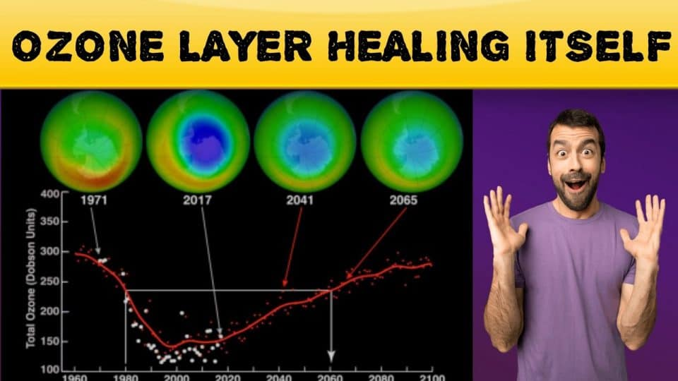 The Ozone layer is healing | COVID-19 Coronavirus: Positive effects in Nature