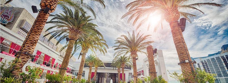 Die Sonne in Las Vegas, Flamingo Hotel Pool