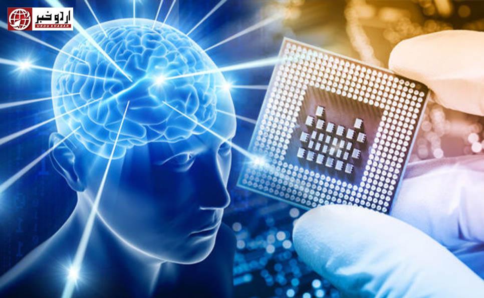 امریکا میں کمپیوٹر چپ کو جانور کے دماغ کے ساتھ جوڑنے کا مظاہرہ