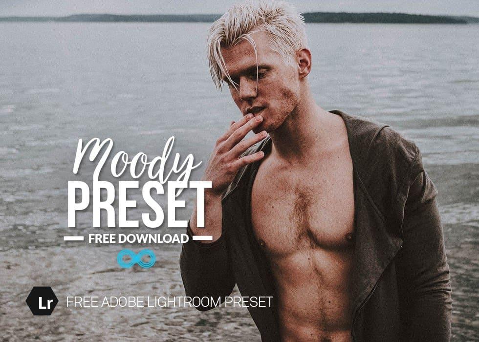 Preset Moody Tones Preset for lightroom