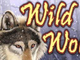 IGT – Wild Wolf