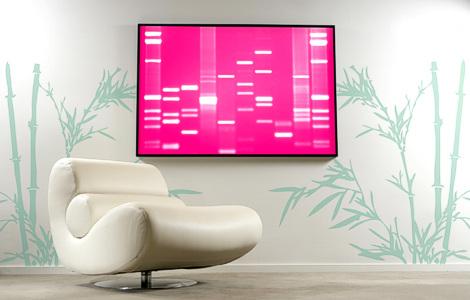 DNA 11. Интерьерная персонификация