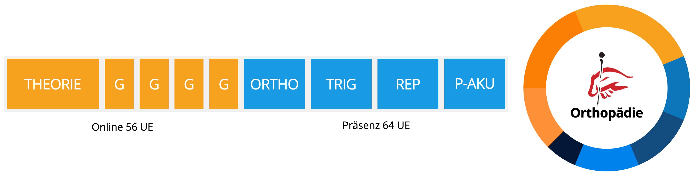 schritte-zum-zertifikat-der-forschungsgruppe-akupunktur-fuer-orthopaeden