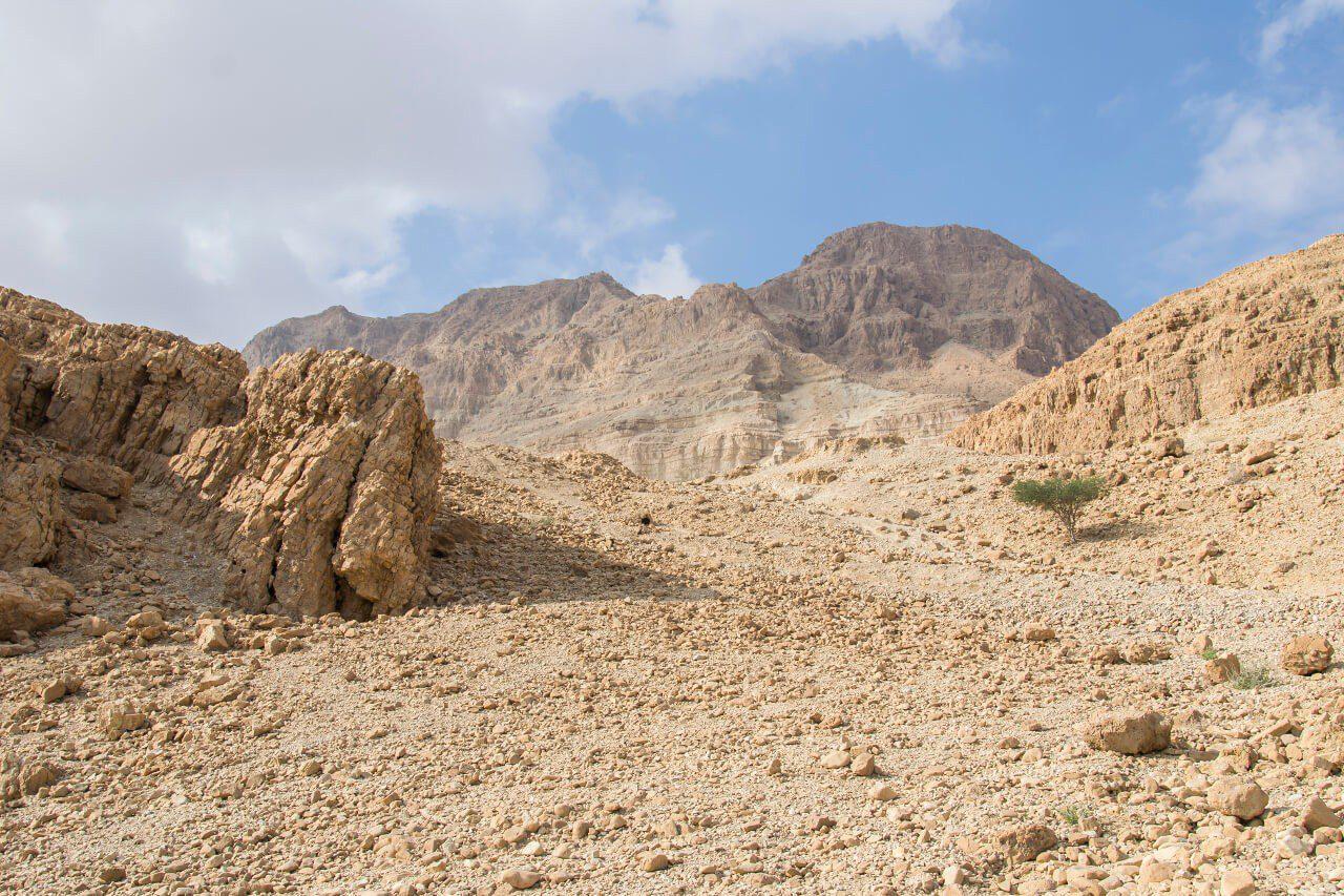 Widok w parku narodowym Ein Gedi.